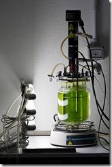 bioreactor by kaibara87