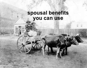 spousal bene